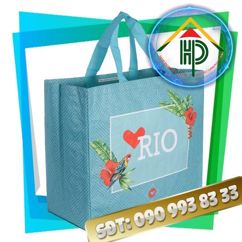 Túi Vải PP Dệt RIO